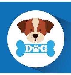 lovely head puppy st benard dog vector image