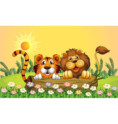 A lion and a tiger vector image
