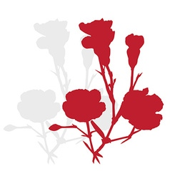carnation silhouette vector image