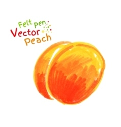 Childlike drawing of peach vector