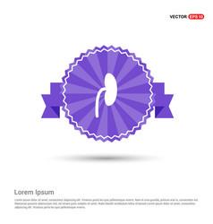 Kidney icon - purple ribbon banner vector