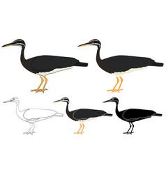 Pavaozinho do para bird in profile view vector