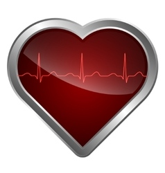 The heart and cardiogram vector