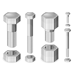 metal bolts and nuts isolate vector image