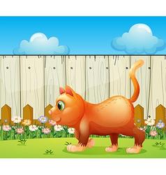 A fat cat at backyard vector