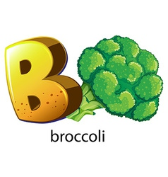 A letter B for brocolli vector image