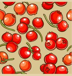 Cranberry berries pattern vector