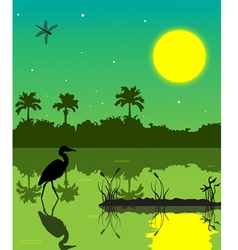 everglades 2 vector image