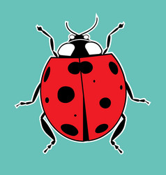 Ladybug sticker summer red vector