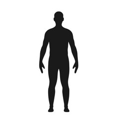 man silhouette male body silhouette vector image
