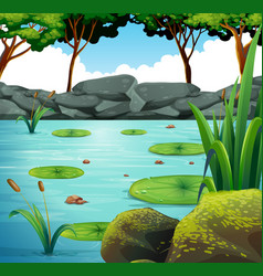 Scene with water lily in pond vector