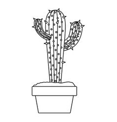 monochrome silhouette with cactus with two vector image vector image