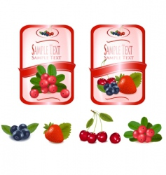 two labels with cranberries vector image vector image