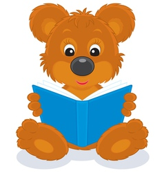 bear cub reading a book vector image