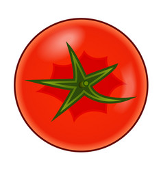 Fresh red tomato with green stem isolated on white vector