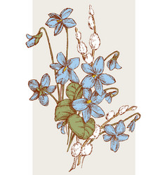 Spring nosegay of the violets and willow twigs vector