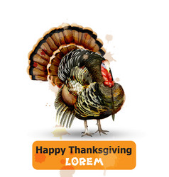 thanksgiving day turkey symbol isolated on vector image