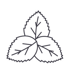 mintgreen salad line icon sign vector image