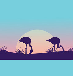 Silhouette of flamingo on hill at sunrise scenery vector
