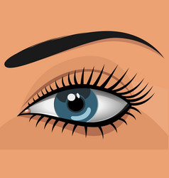 woman blue eye vector image