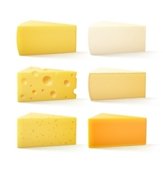 Set of cheese swiss cheddar bri parmesan camembert vector