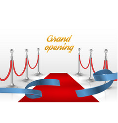 white backgraund with red carpet and blue ribbon vector image vector image