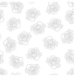 carnation outline background vector image