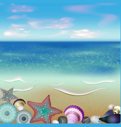 Graphic Of Seashells on a Beach vector