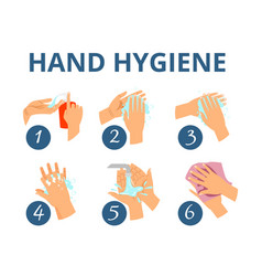 hand hygiene instruction vector image