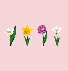 set exotic flowers plants with nature leaves vector image