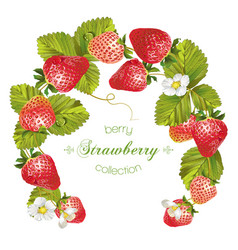 Strawberry wreath banner vector image