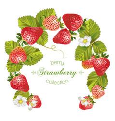 Strawberry wreath banner vector