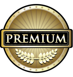 premium gold icon vector image vector image