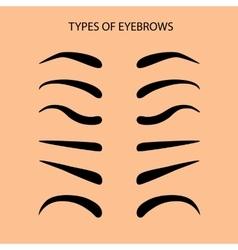 Eyebrows Set Flat vector image