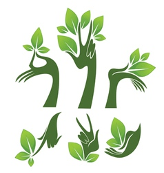 green hands eco and beauty symbols vector image