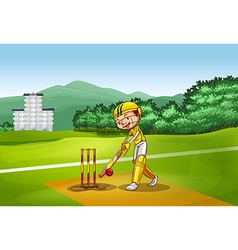 Boy playing cricket on pitch vector