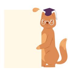 cat banner kitten character peeking behind vector image
