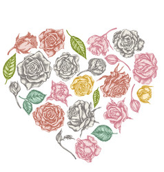heart floral design with pastel roses vector image