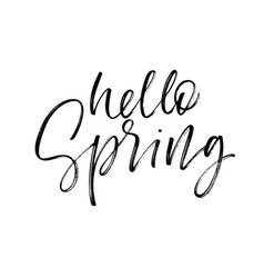 hello spring card modern brush calligraphy vector image