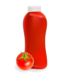 Ketchup Tomato Sauce on White Background EPS10 vector image