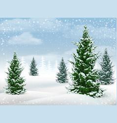 winter landscape fir tree vector image