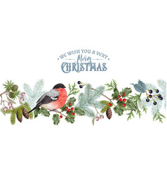 Bullfinch christmas border vector
