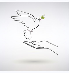 dove peace flies to open palm vector image