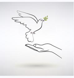 Dove peace flies to open palm vector