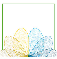 leaf color contour on white background vector image