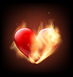 red human heart on fire isolated on black vector image