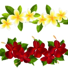 Samless border made of tropical flowers vector image
