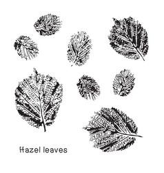 Set leaf imprints grunge leaves vector