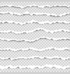 set torn horizontal seamless paper stripes vector image