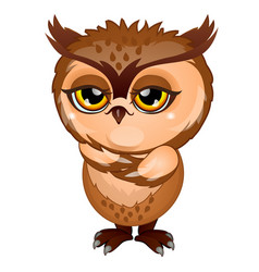 wise brown owl isolated on white background vector image